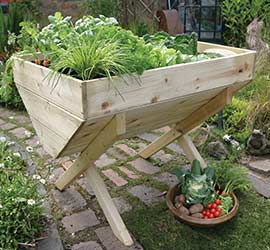 Grow your own potatoes Veg Bed